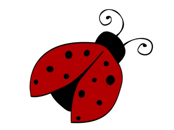 Ladybugs Child Care Centre